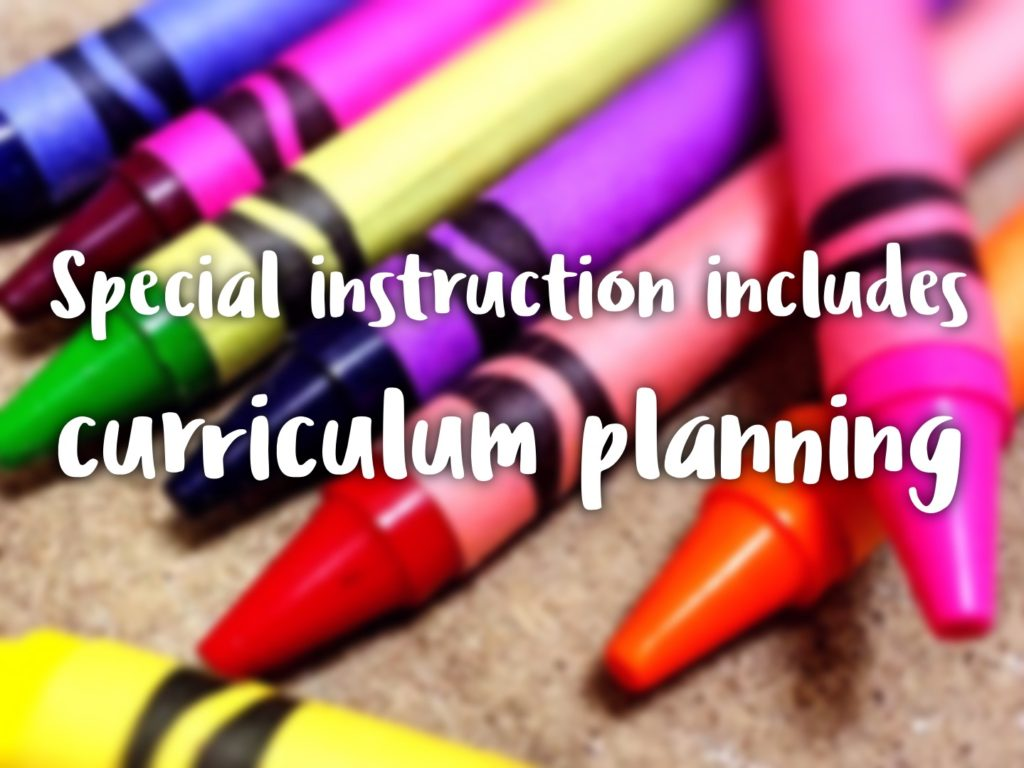 special instruction includes curriculum planning